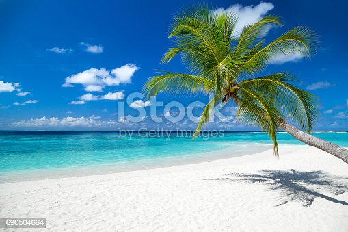 istock tropical paradise beach background 690504664