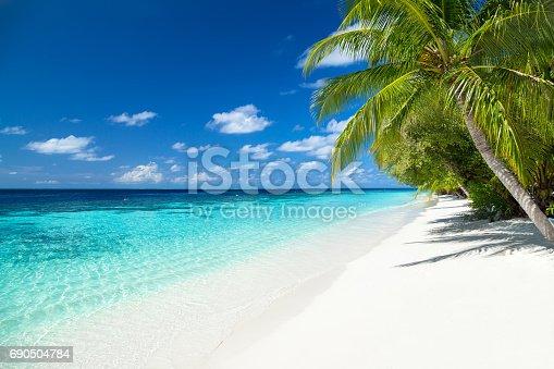 istock tropical paradise beach background 690504784