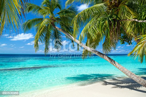 istock tropical paradise beach background 690506986