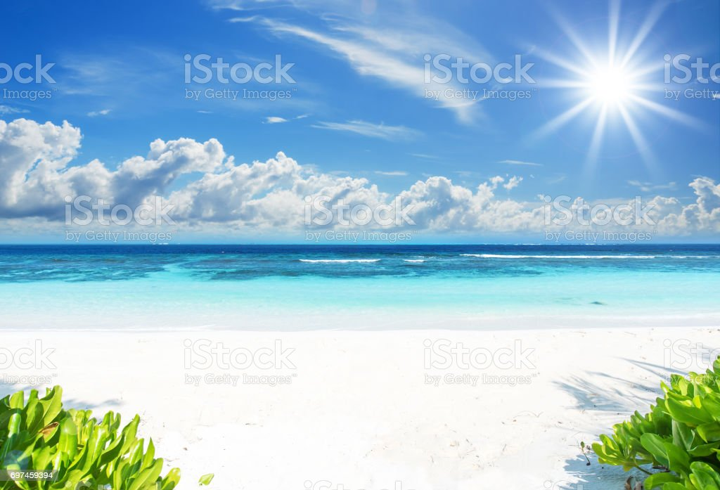Hd Tropical Island Beach Paradise Wallpapers And Backgrounds: Tropical Paradise Beach In Summer Stock Photo & More