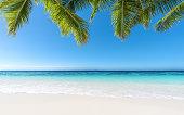 Tropical paradise beach in summer