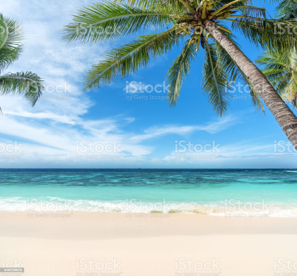Tropical paradise beach of Maldives stock photo