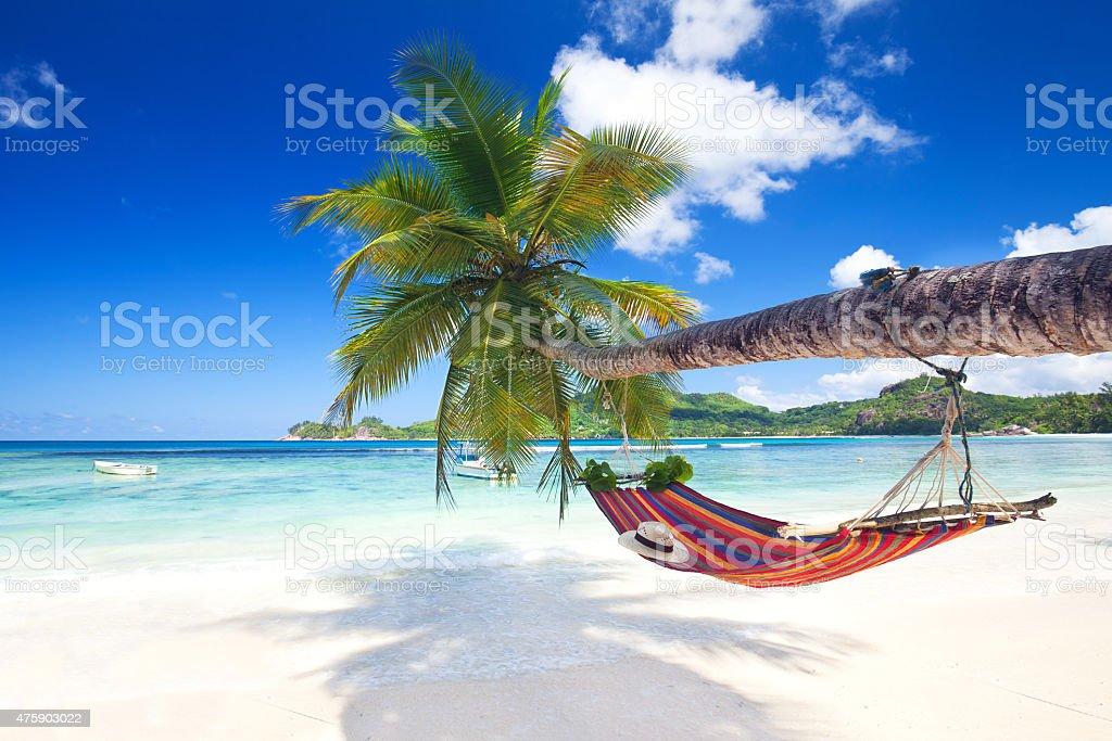 tropical paradise beach stock photo