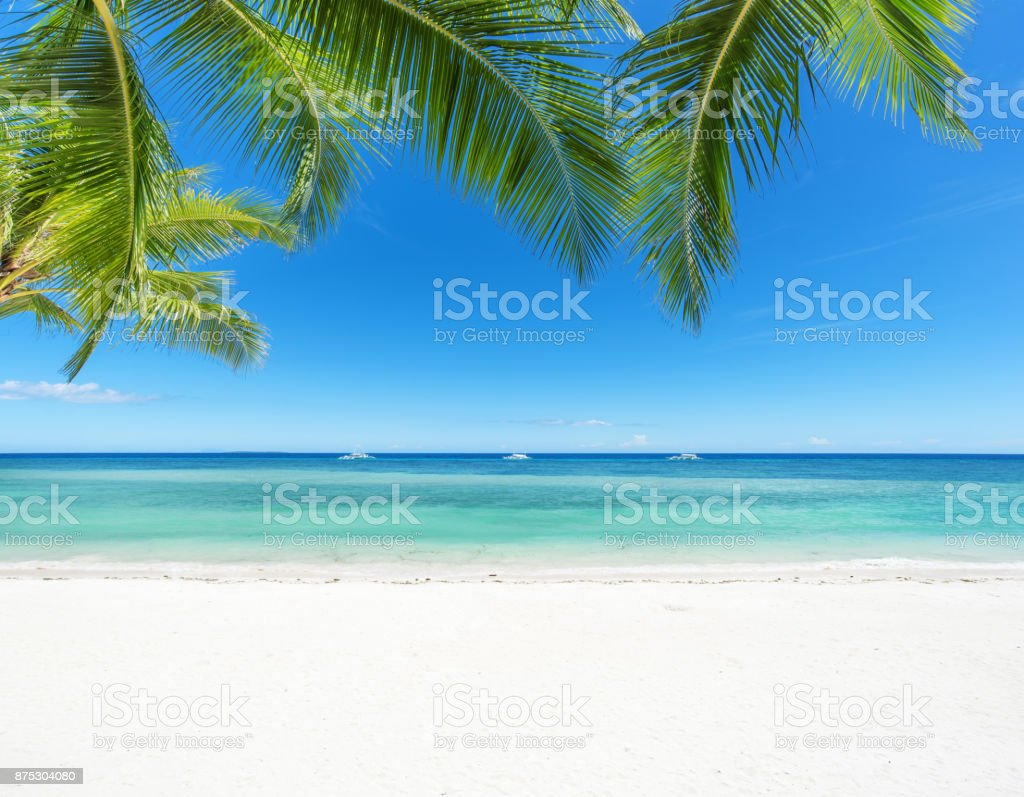 Hd Tropical Island Beach Paradise Wallpapers And Backgrounds: Tropical Paradise Beach Stock Photo & More Pictures Of