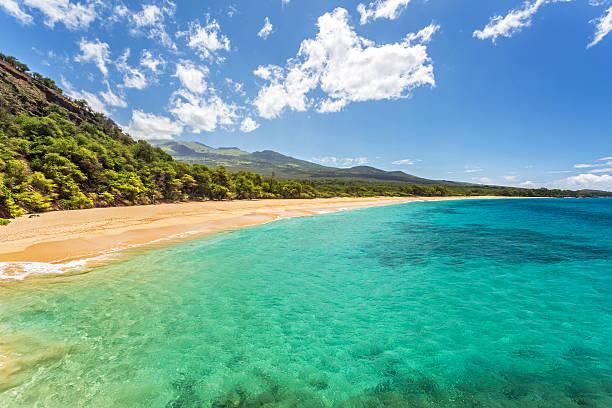 Tropical paradise found stock photo