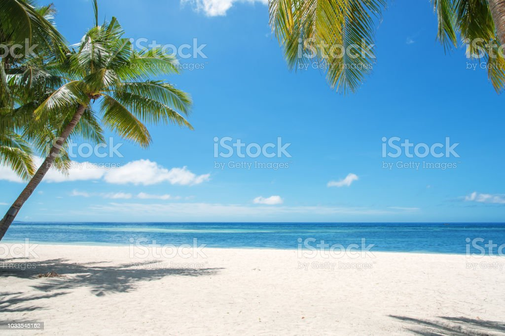 Tropical Paradise Landscape - foto stock