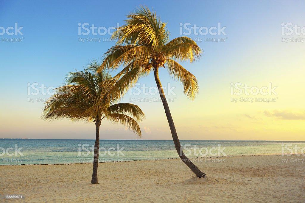 Tropical Paradise of Riviera Maya Caribbean Cancun Mexico stock photo