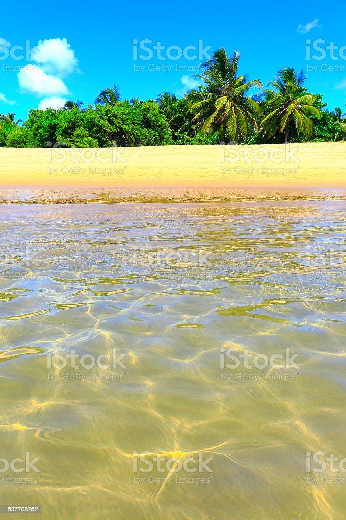 Tropical paradise:  Praia do Forte  bright translucent beach, Bahia, Brazil stock photo