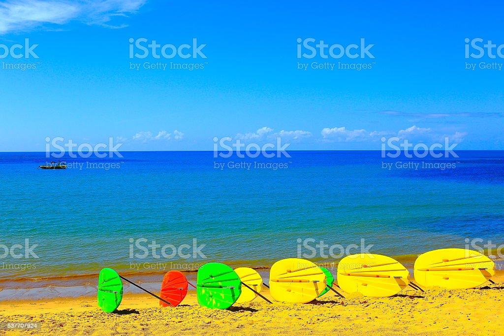 Tropical paradise: Praia do Forte, Paddleboarding surf, Bahia, Brazil stock photo