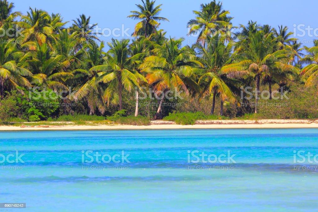 Paraíso tropical: turquesa desierta arena de la playa, Isla Saona, Punta Cana – República Dominicana - foto de stock
