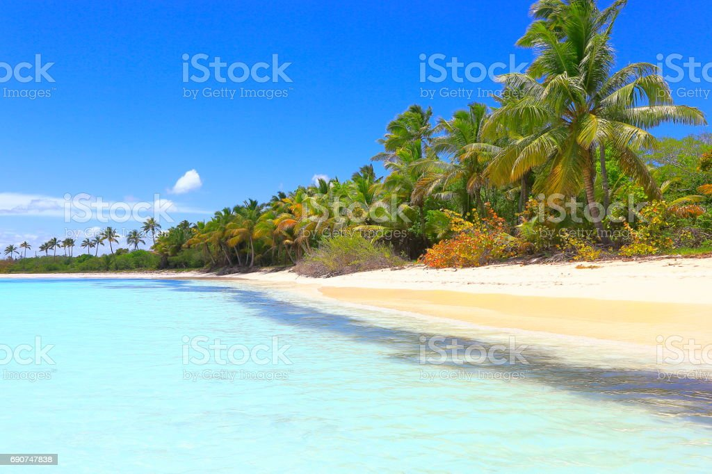 Tropical paradise: Sandy deserted turquoise beach, Saona Island, Punta Cana – Dominican Republic stock photo