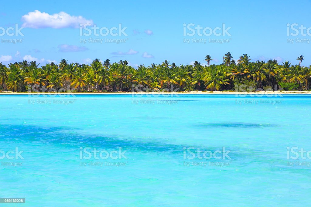 Tropical paradise: turquoise caribbean sea coastline shore under blue sky stock photo