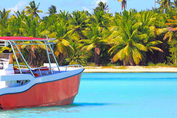 tropical paradise: turquoise sand beach, lonely ship, green palm trees - urlaub in kuba stock-fotos und bilder