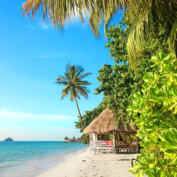 Tropical paradise with a hut on a white sand beach Tropical paradise with a hut on a white sand beach. Thailand, Koh Chang, Kai Bae beach. koh chang stock pictures, royalty-free photos & images