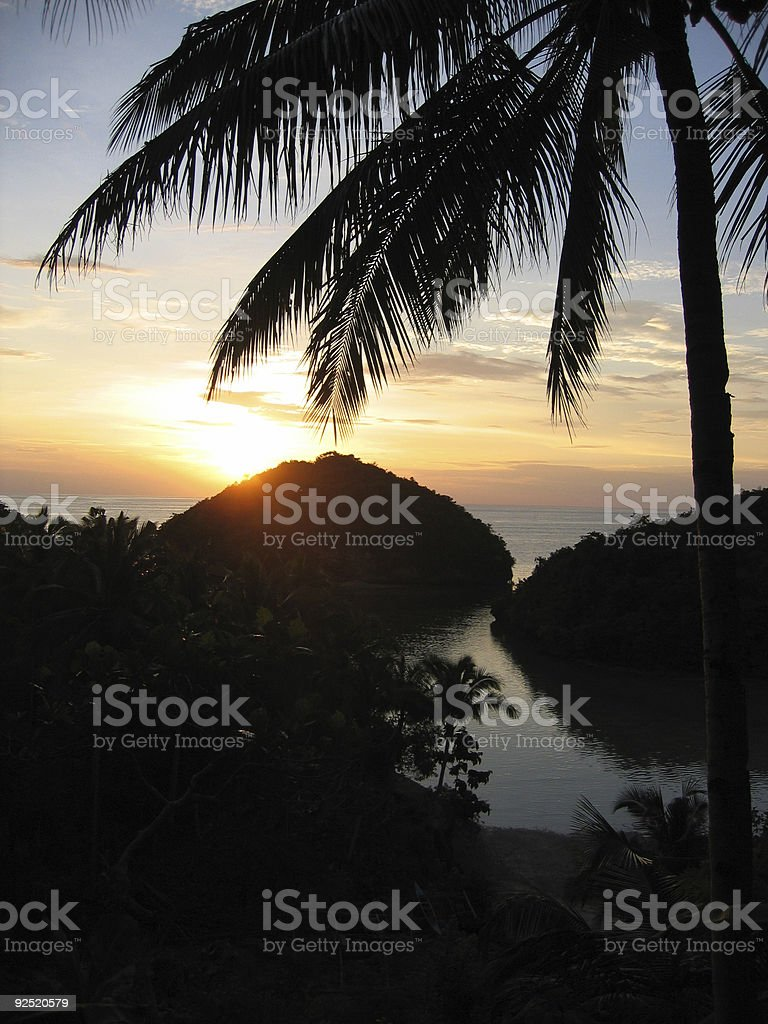 tropical philippines sunset palm tree silhouette royalty-free stock photo