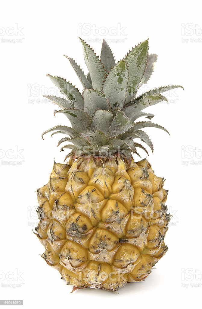 Tropical pineapple royalty-free stock photo