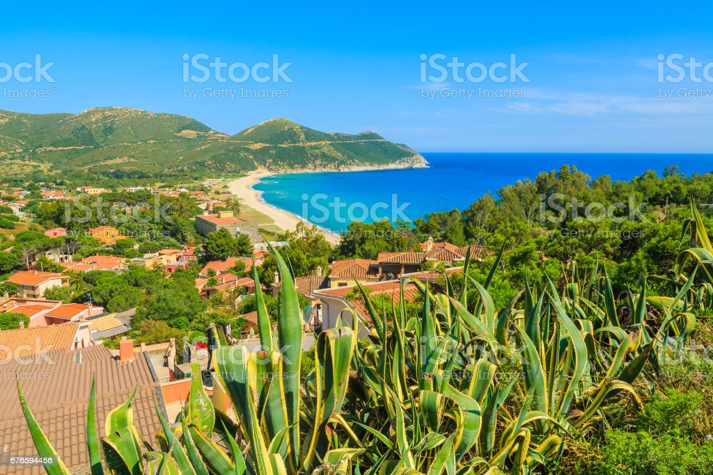 Tropical plants on coast Sardinia island with view of beautiful Capo Boi bay, Italy stock photo