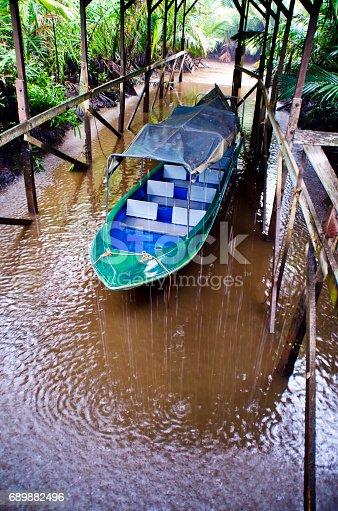 A tropical rain on Borneo