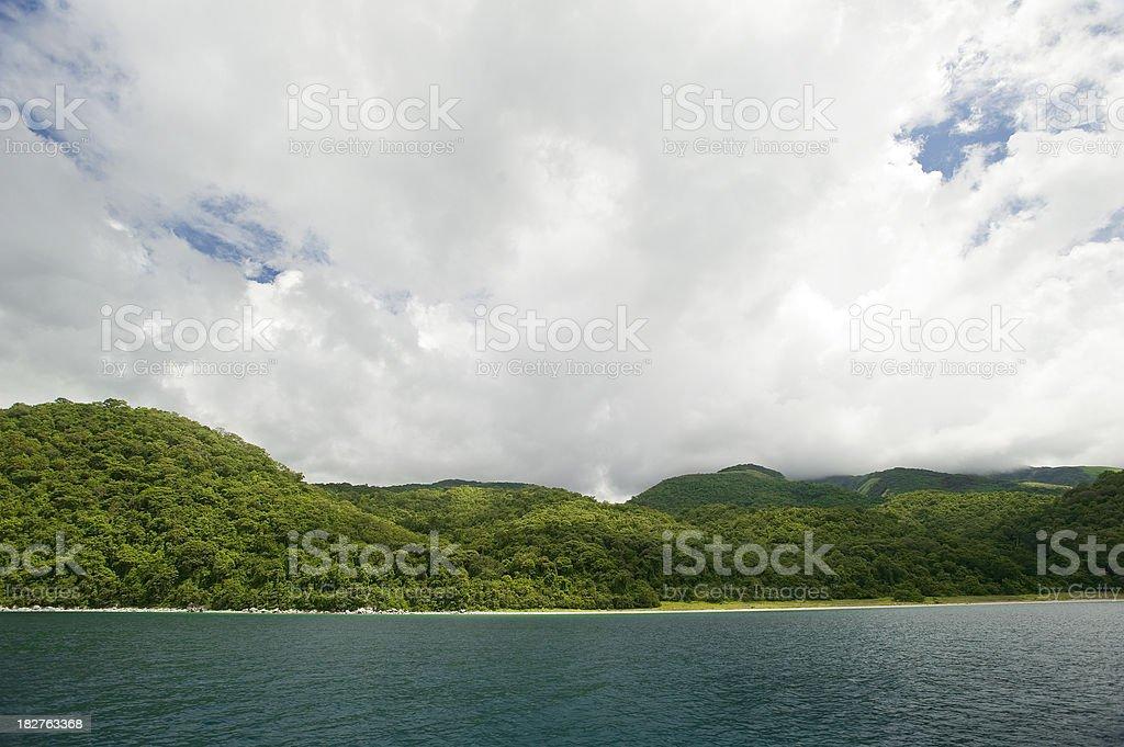 Tropical rainforest at the shores of Lake Tanganyika stock photo