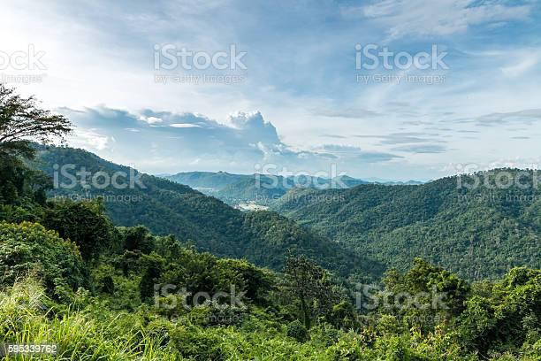 Photo of tropical rainforest,Khao Yai National Park Thailand.
