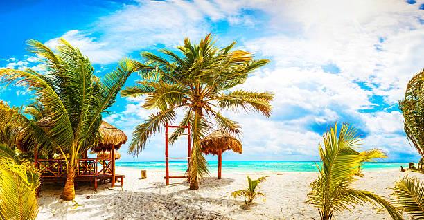 tropical resort. mexico. riviera maya. - playa del carmen stock photos and pictures