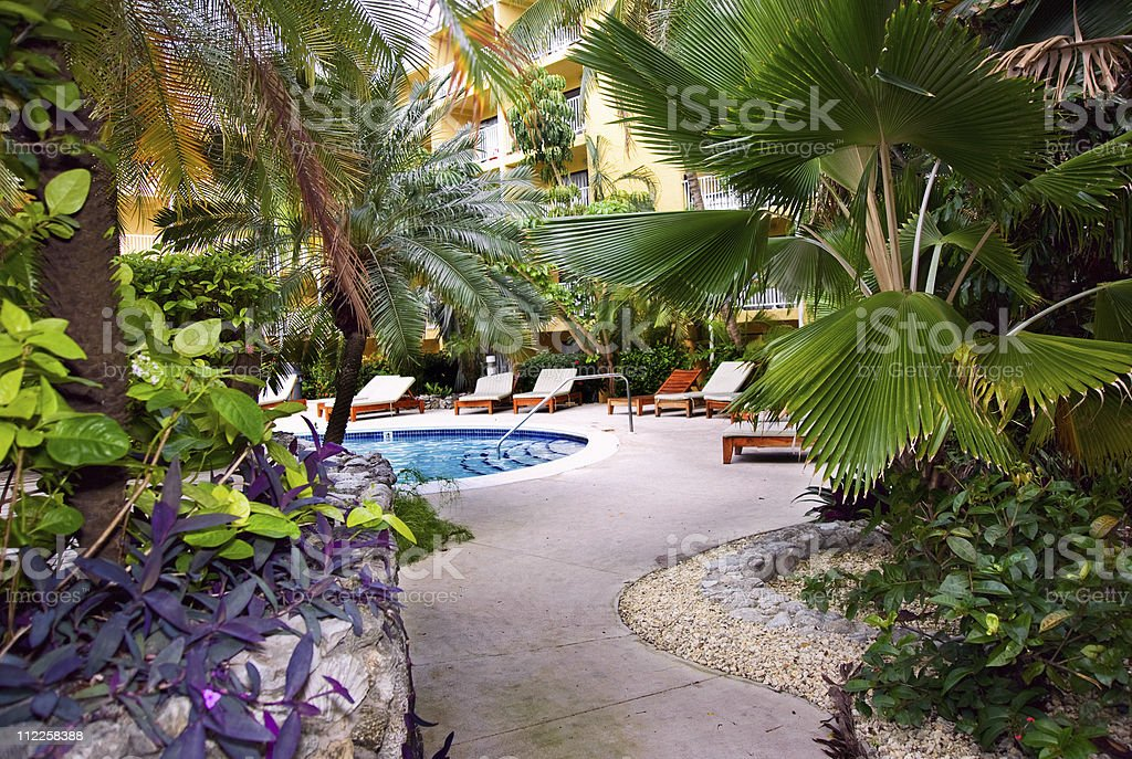 tropical resort pool stock photo