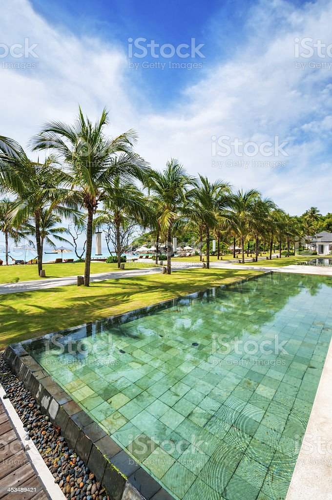 Tropical Resort pool with palm trees and ocean royalty-free stock photo
