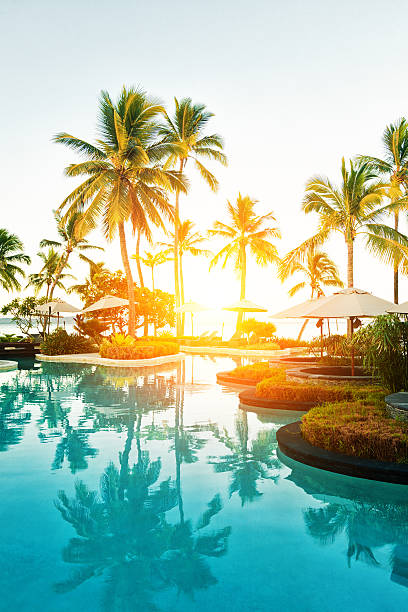 tropical resort poolside at sunset - fiji stock photos and pictures