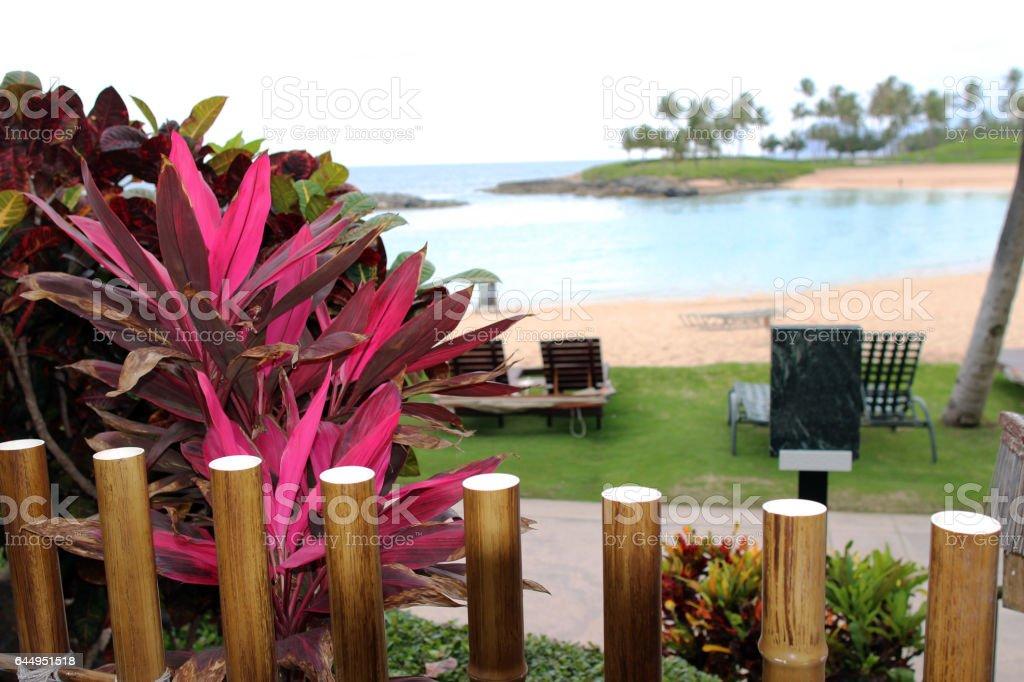 Tropical resort view stock photo