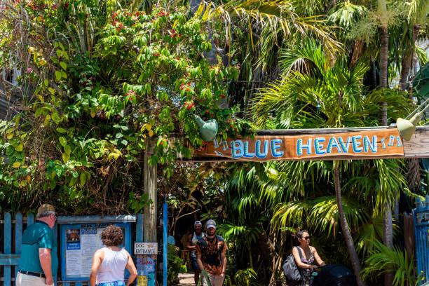 restaurant tropical appelé bleu ciel, architecture de l'entrée en floride sur le voyage, journée ensoleillée, menu de lecture public - jungle menu photos et images de collection