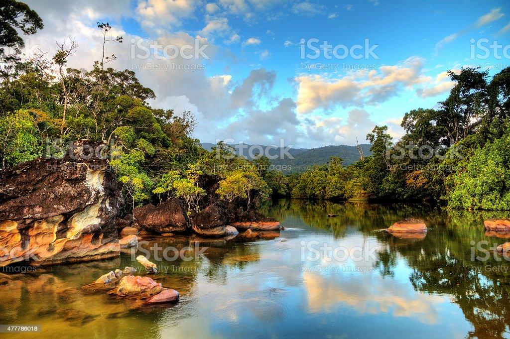 Tropical river Masoala stock photo