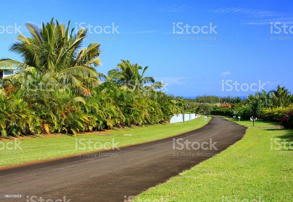 Tropical road on Kauai Hawaii stock photo