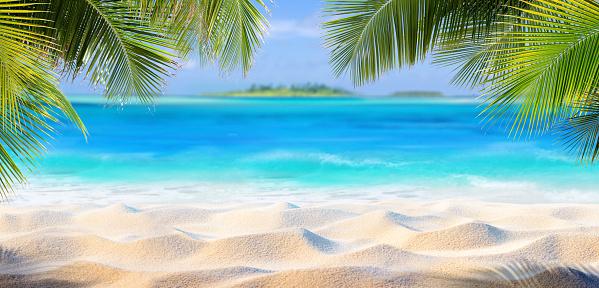 Palmiye Yaprakları Ve Cennet Adası Tropik Kum Stok Fotoğraflar & Ada'nin Daha Fazla Resimleri