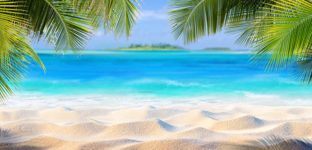 tropical sand with palm leaves and paradise island - beach stock pictures, royalty-free photos & images
