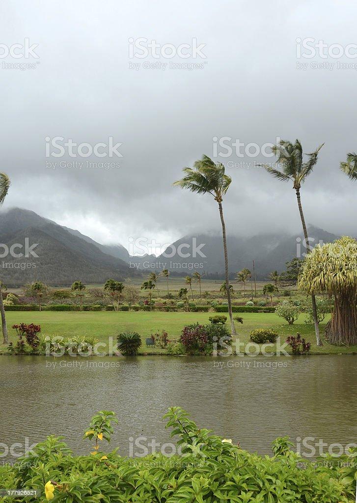 Tropical scenery from Maui, Hawaii royalty-free stock photo