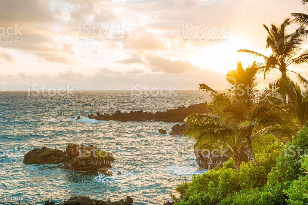Tropical Scenic Black Sand Beach Hana Maui Hawaii Travel Destinations stock photo