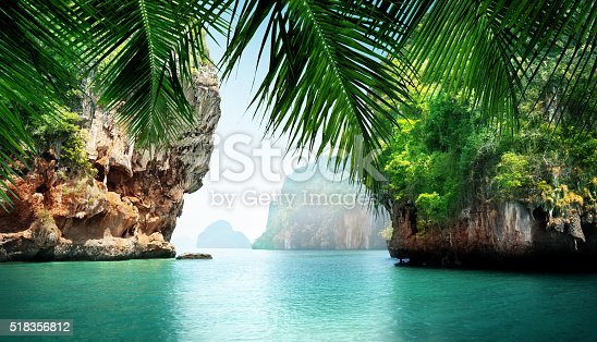 tropical sea and rocks