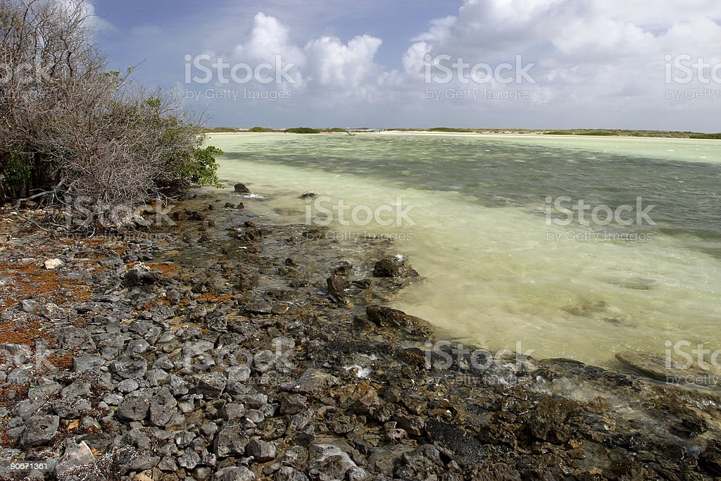 Tropical Seashore stock photo