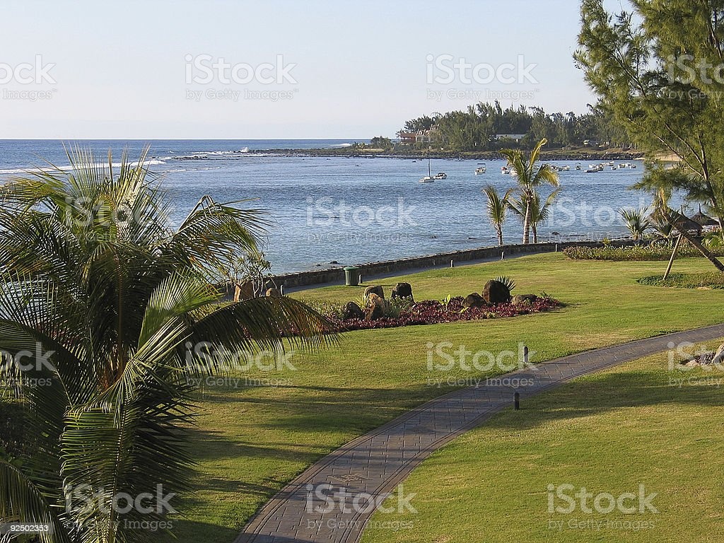 Tropical Series 5 royalty-free stock photo
