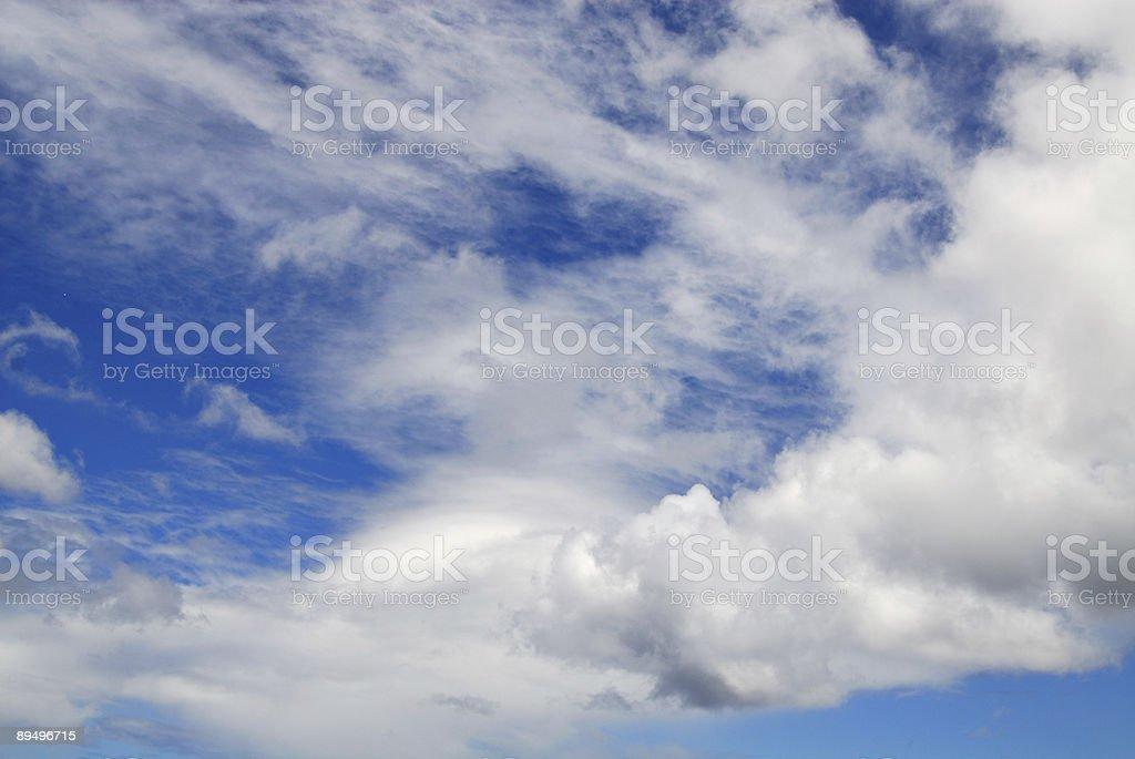 Tropical Skies royaltyfri bildbanksbilder