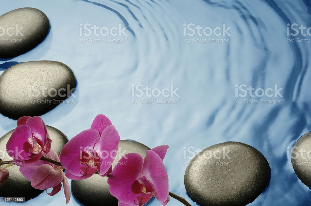 Tropical Spa stock photo