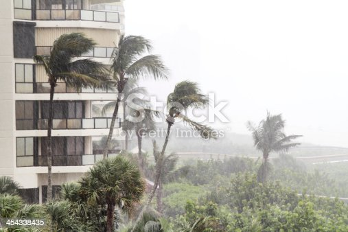 Heavy rain and wind storm at a beach front condo property. Palm fronds are blowing in the wind and heavy rain can be seen falling.