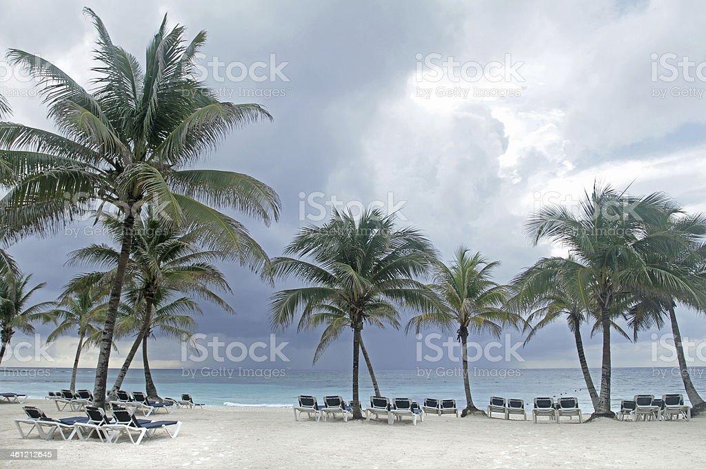 Tropical Storm stock photo