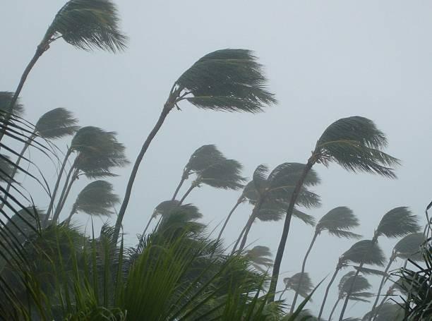 Tropical storm picture id474886182?b=1&k=6&m=474886182&s=612x612&w=0&h=jo9nuc2p3uywisw4zrhuodlfaz zcgzrrbxzxjwsnhc=