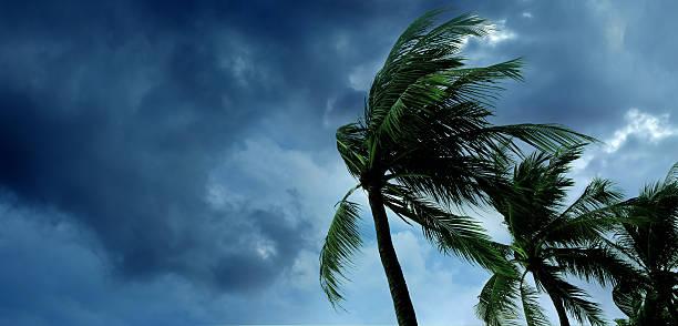 Tropical storm picture id627067972?b=1&k=6&m=627067972&s=612x612&w=0&h=lwgeaw16g8cxh4h0edhvcj6azbbym6dquo0fiz76fyy=