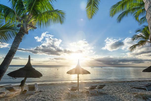 tropical straw parasol on palm beach at sundown stock photo