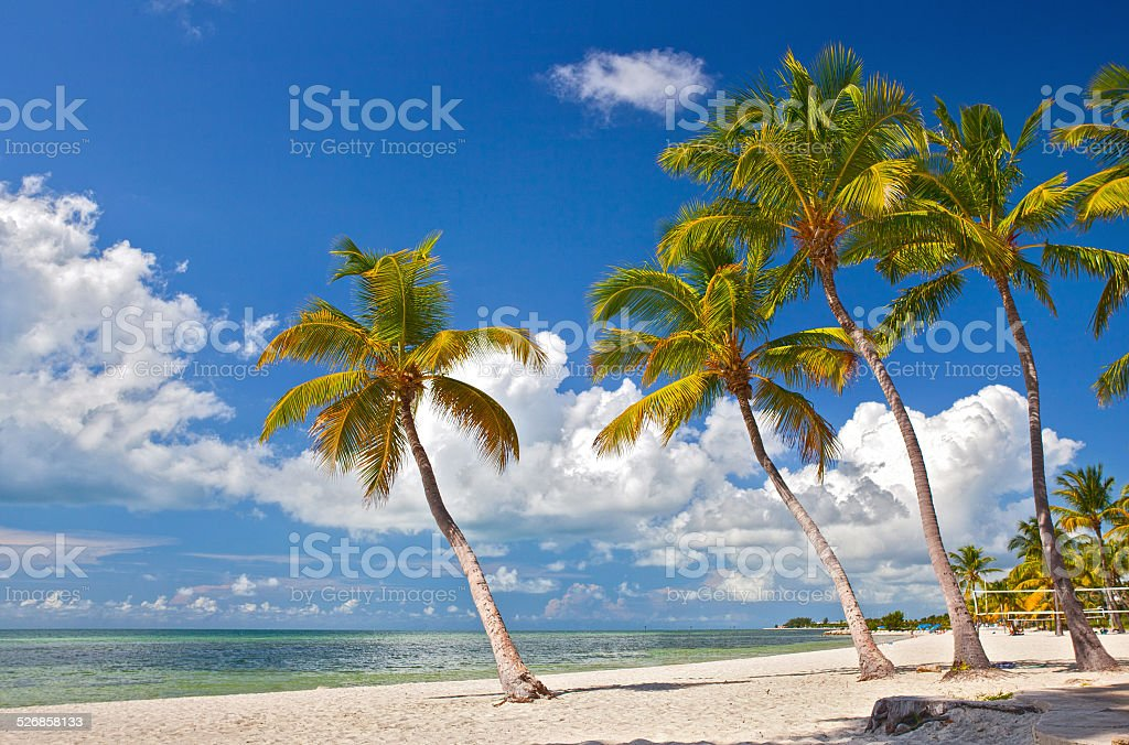 Tropical summer beach paradise in Key West Florida stock photo