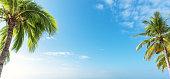 Tropical summer copy space scene
