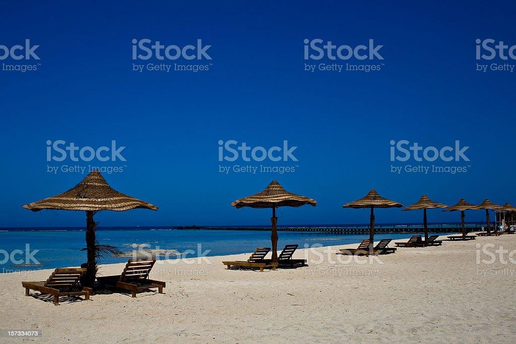 Tropical Summer #2 stock photo