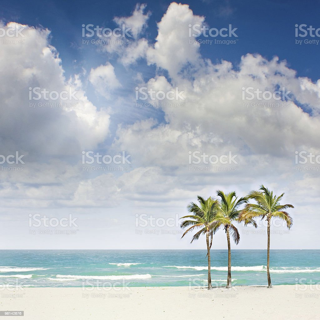 Tropical sunny beach paradise royalty-free stock photo